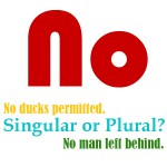 no with singular or plural nouns